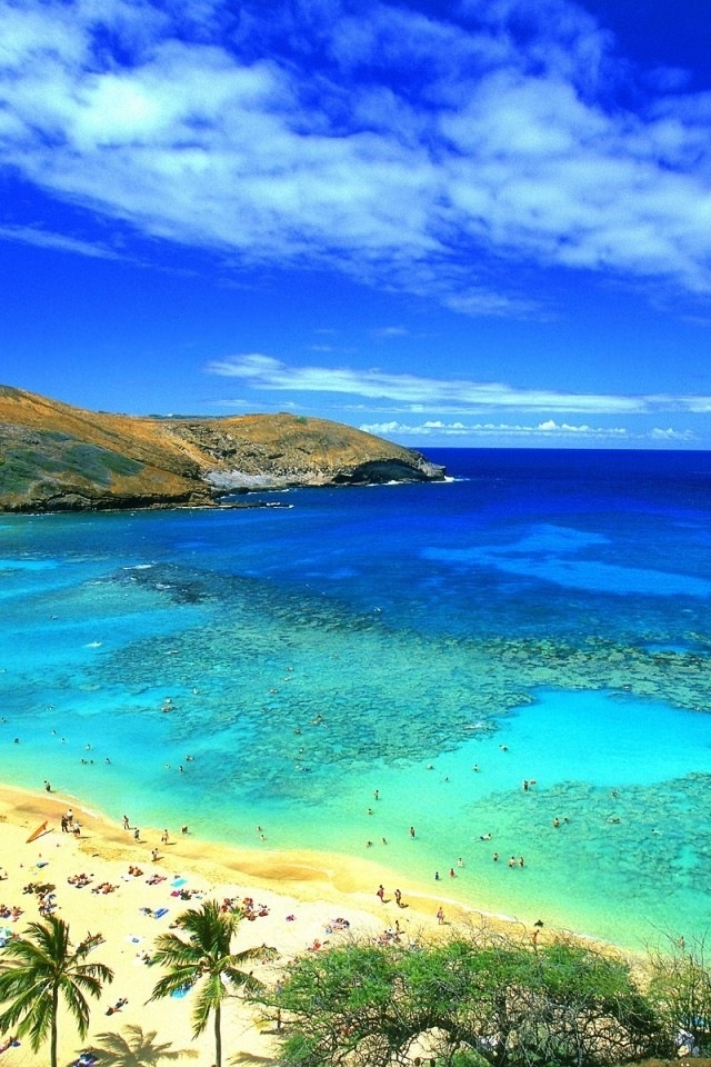 Hawaii beach iPhone HD Wallpaper iPhone HD Wallpaper download iPhone 640x960