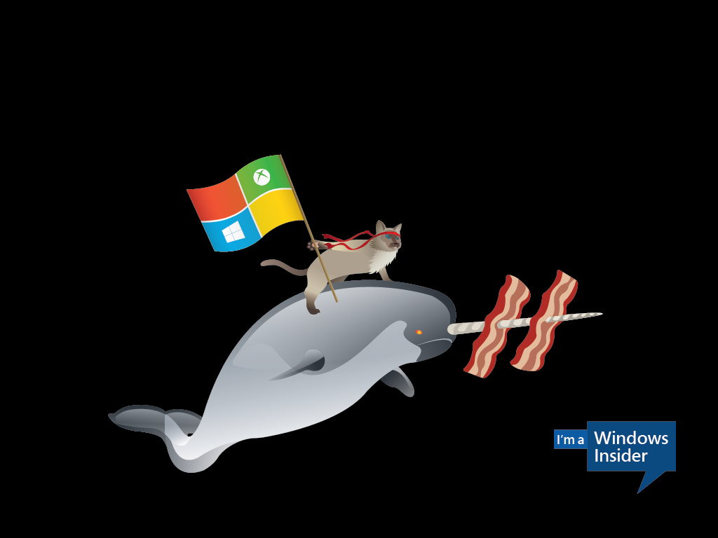 Windows 10 ninjacat meme with new Microsoft desktop wallpapers CIO 1024x768