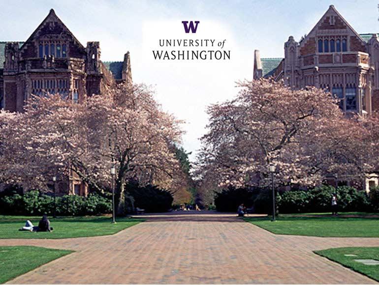 University of Washington Video Conferencing Solutions   Avaya 770x580