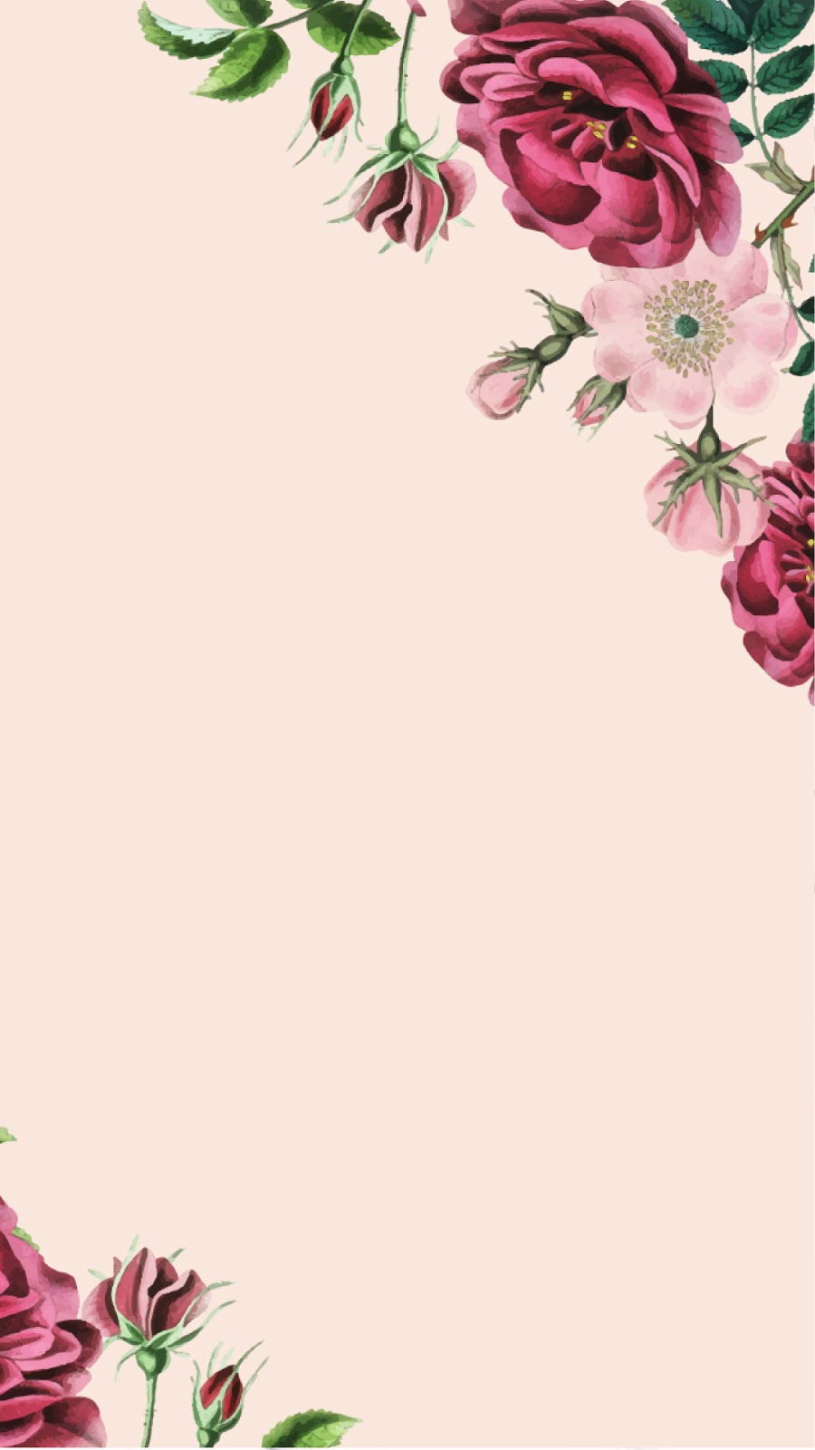20 Vector Floral Wallpaper and Background Download HD images 900x1600
