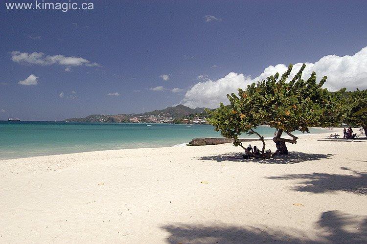 Anse Beach Grenada Landscape Nature Hd City Wallpapers 750x499