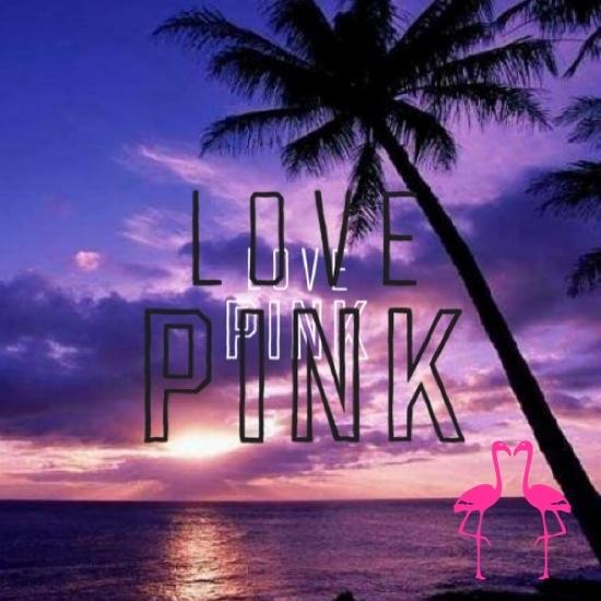 victoria secret pink 550x550