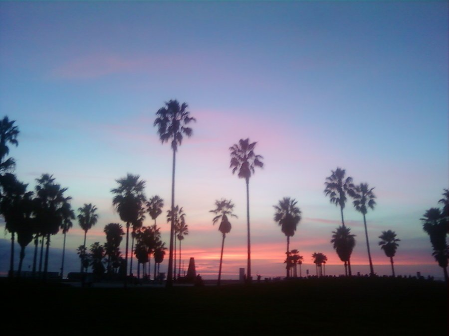 Venice Beach Sunset by HIGHimLOBO 900x675