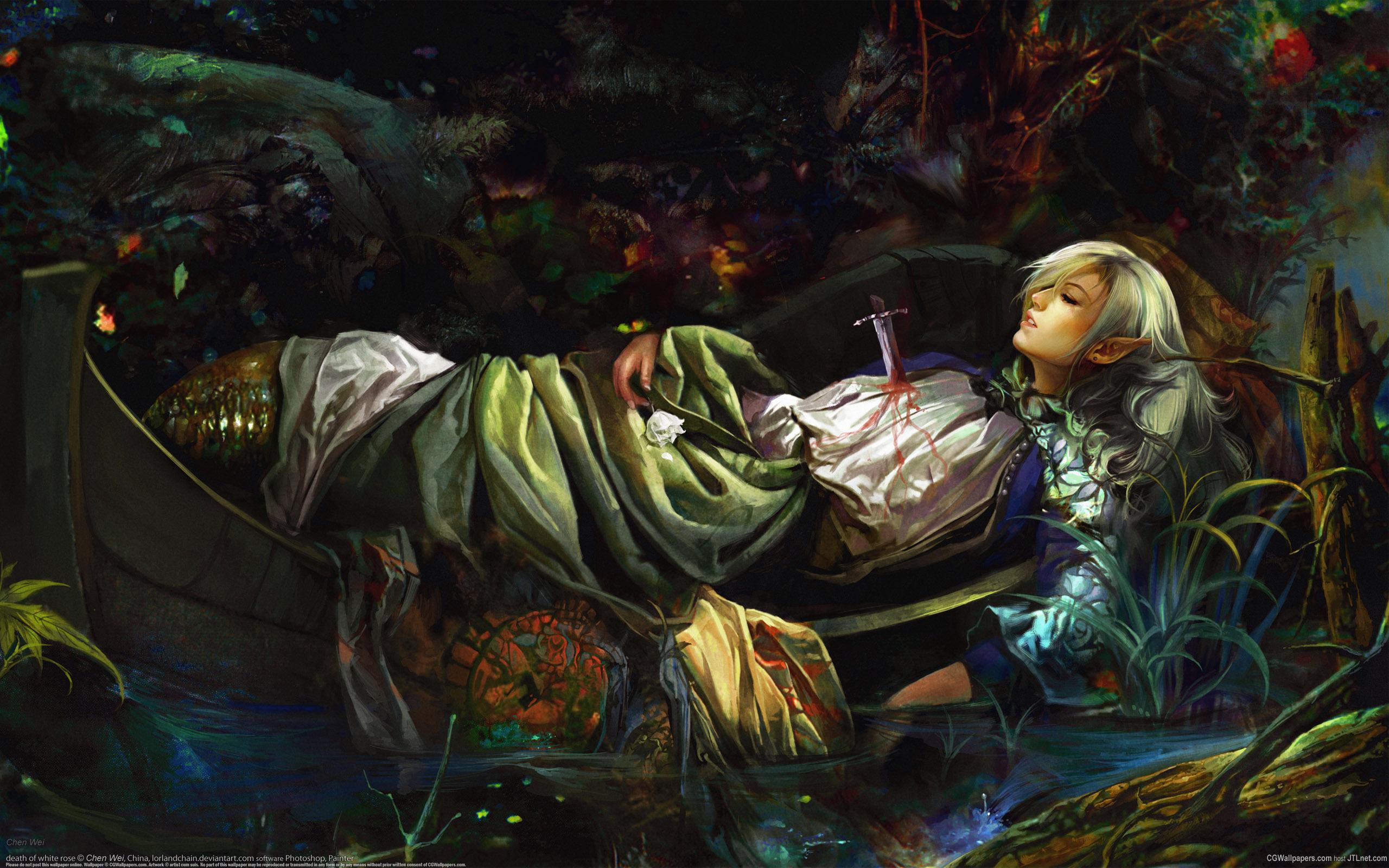 Elf Fantasy wallpaper murder Wallpapers 3d for desktop 3d pictures 2560x1600