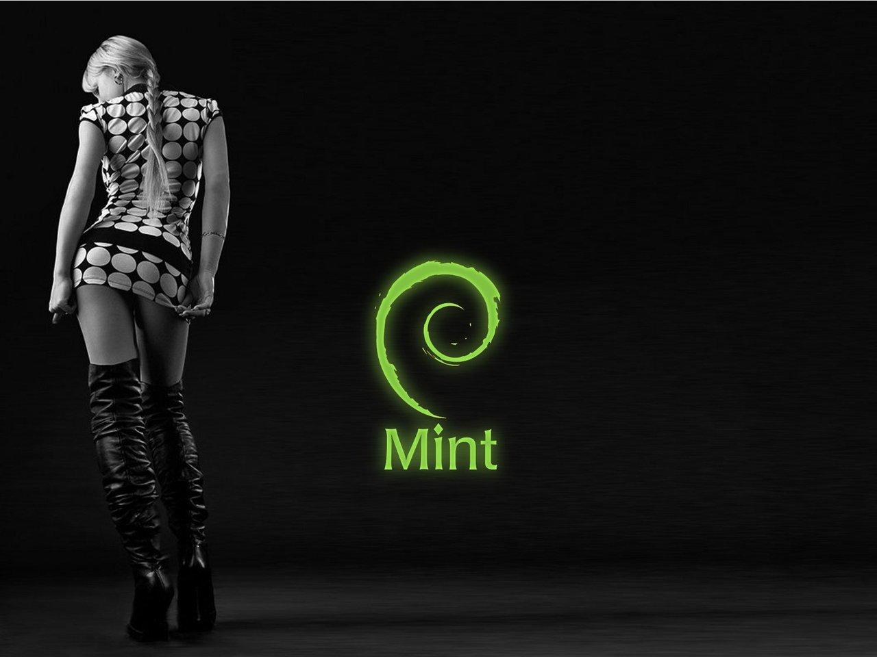 Linux Mint Wallpaper - WallpaperSafari Ubuntu Logo Black