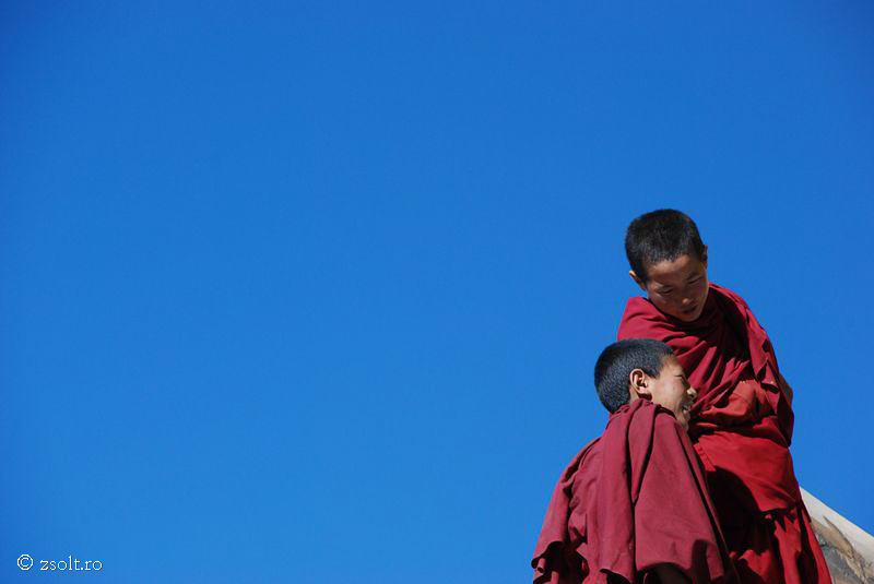 Tibetan Buddhist Wallpapers Young Tibetan Buddhist monks 800x535
