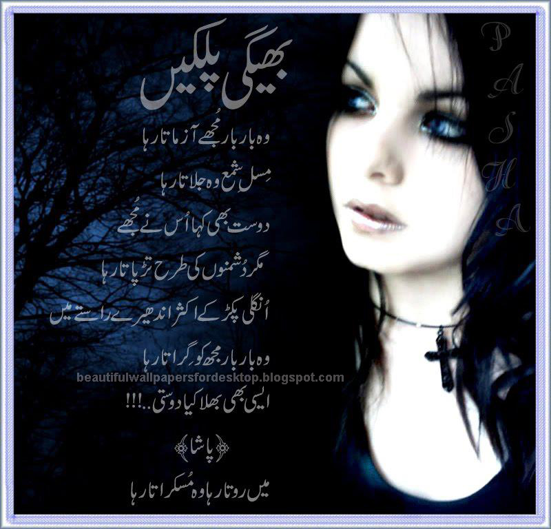 English Poetry Sindhi Poetry Punjabi Poetry 800x768