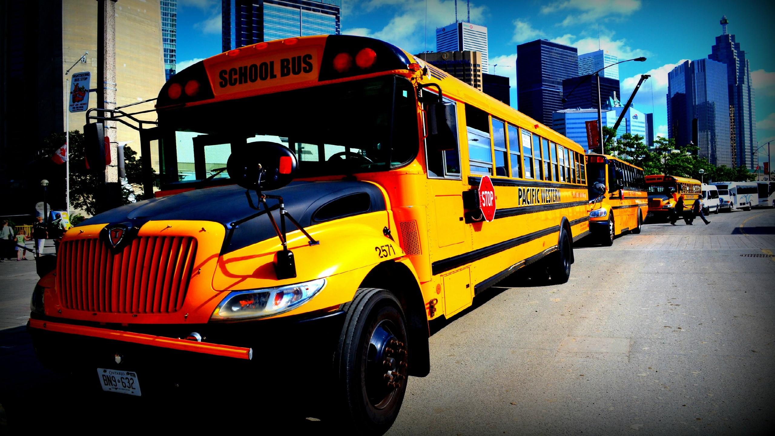 School Bus   Wallpaper 40188 2560x1440