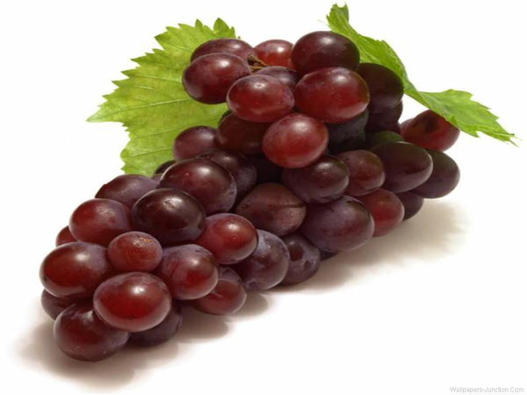 Grapes Wallpaperjpg 1024x768