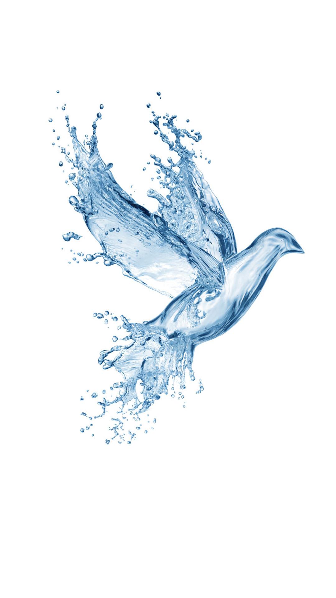 To download click on Water Splash Bird Wallpaper then choose save 1080x1920