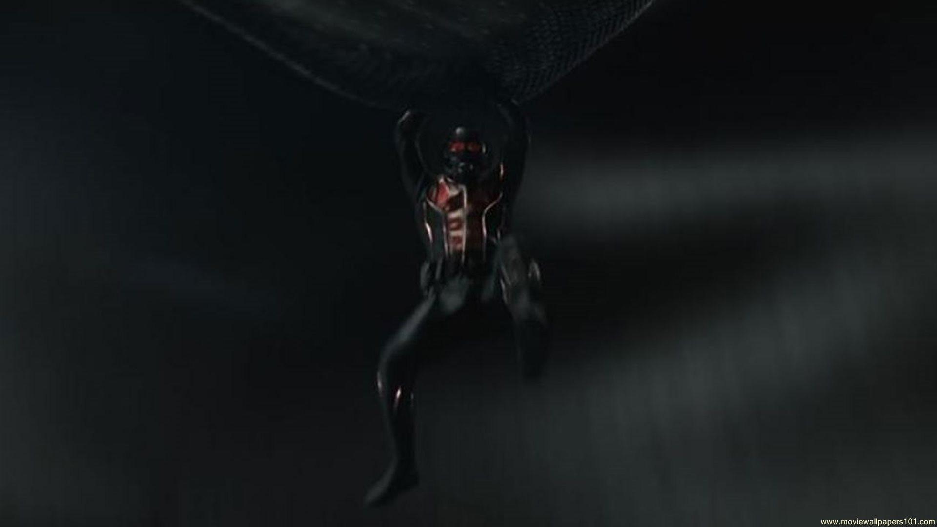 Ant Man Retina Movie Wallpaper: Ant Man IPhone Wallpaper