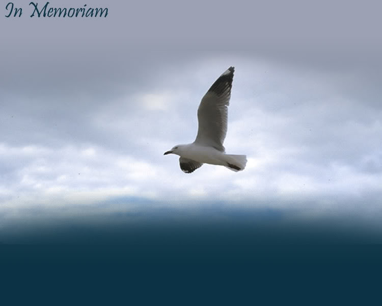 Funeral Background 750x600