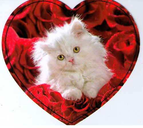 Valentine kitten Animals Round Robin From eellaa By alcott1 500x447