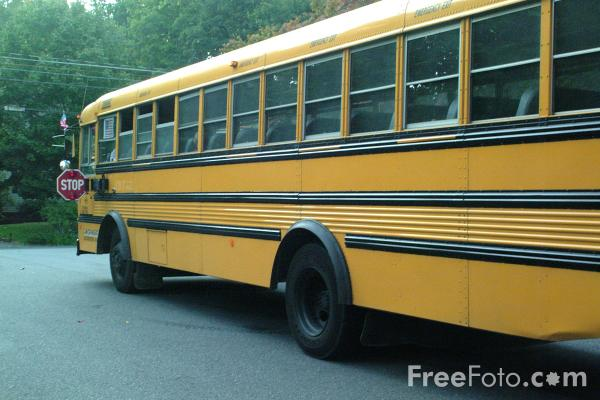 Yellow School Bus pictures use image 2030 02 1 by FreeFotocom 600x400