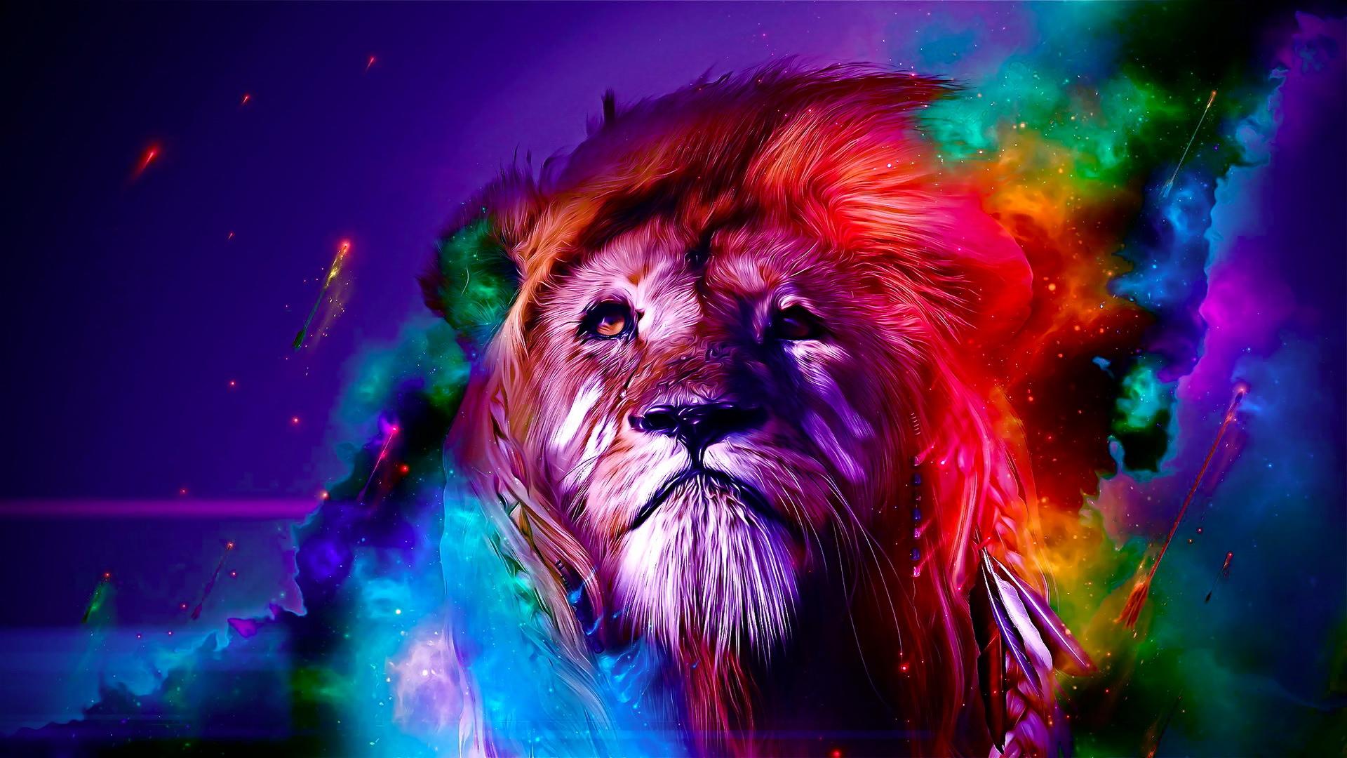 colorful lion wallpaper wallpapersafari
