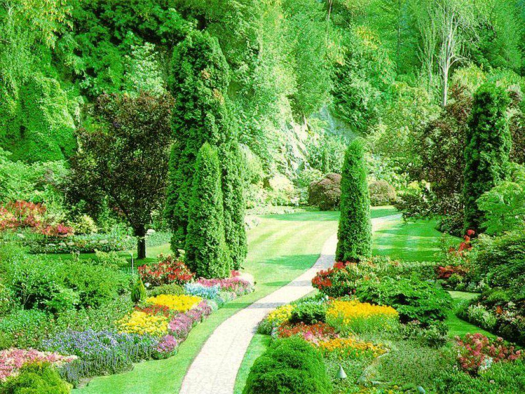SUN SHINES Beautiful Flower Garden Wallpapers 1024x768