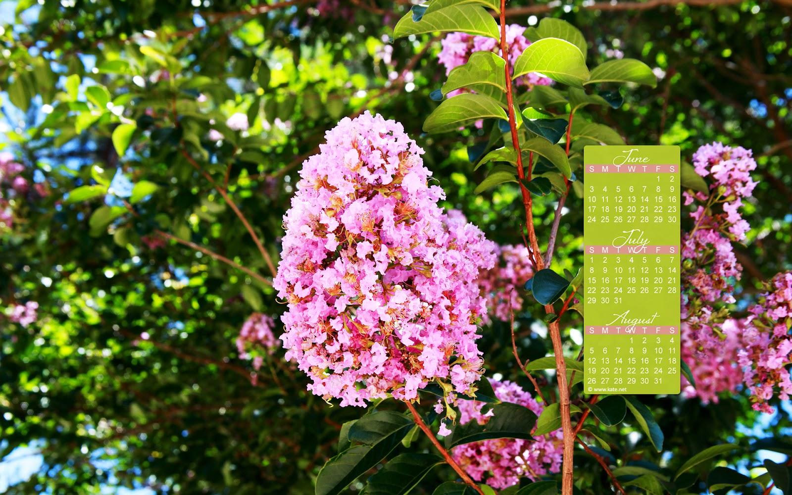 Desktop Calendar Monthly Calendars   Widescreen Wallpapers HD 1600x1000