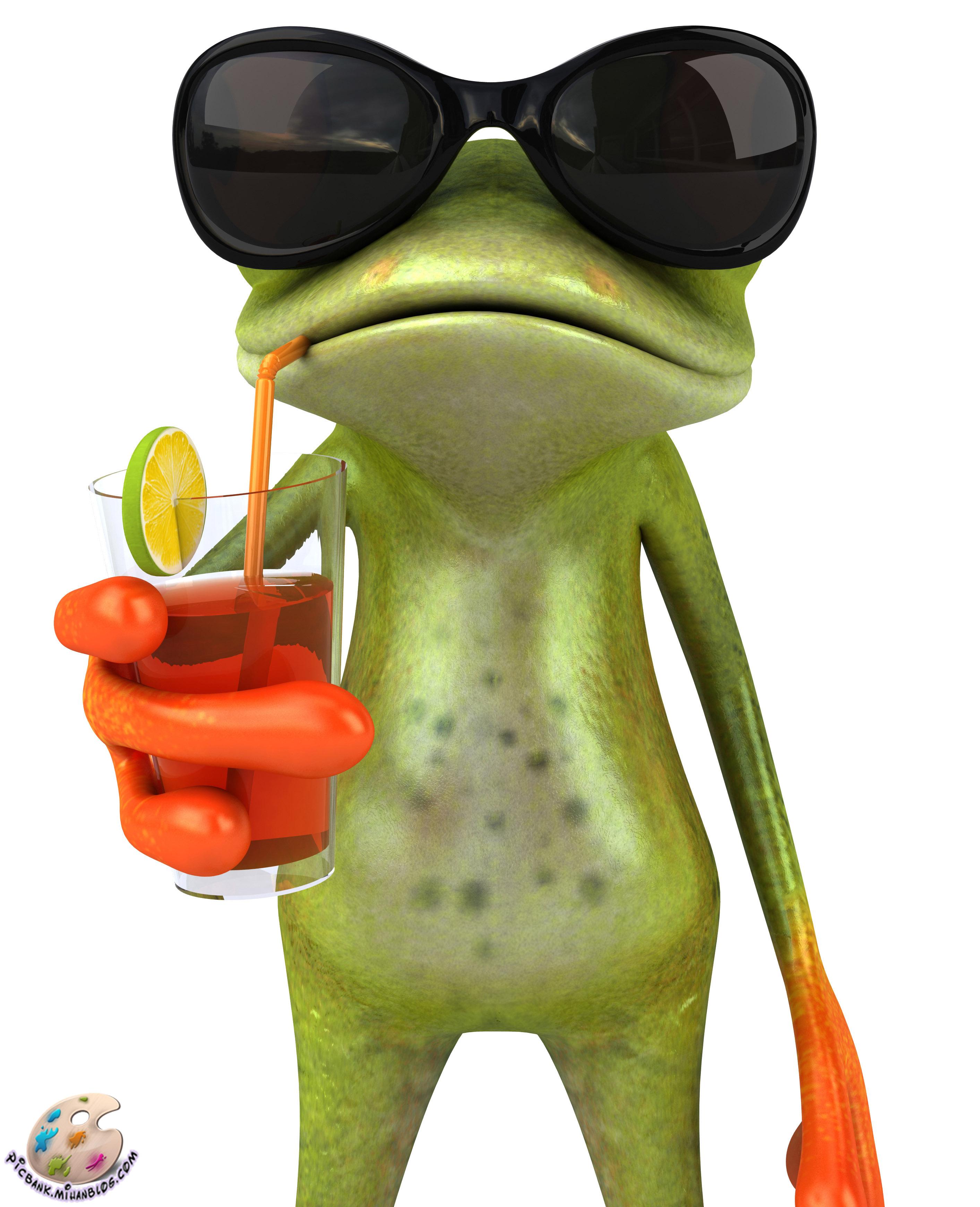 relax frog wallpaper