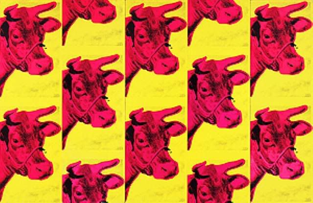 Cow wallpaper 640x414