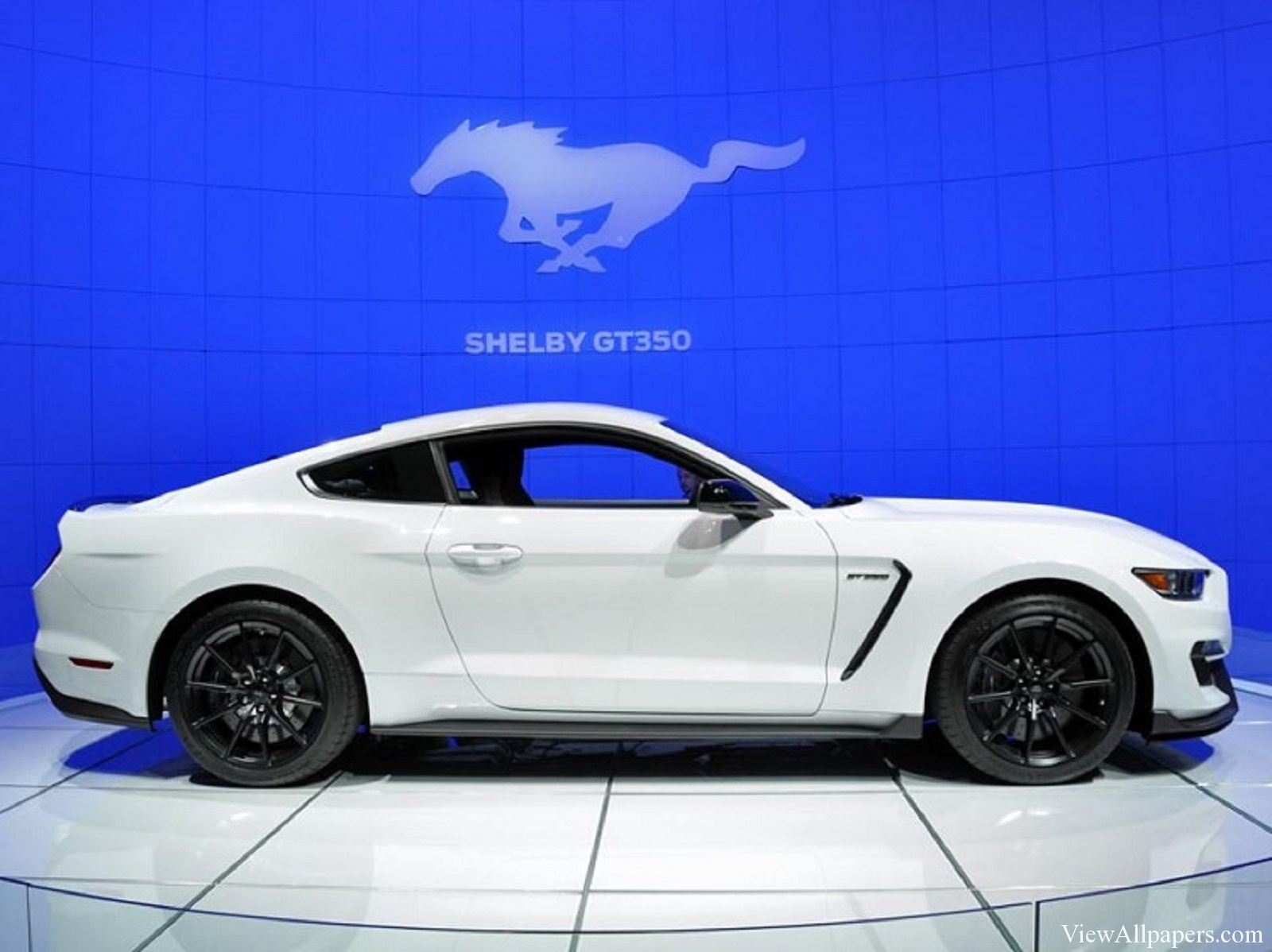 Wallpaper download 2016 Mustang Shelby GT350 Images Wallpaper 1600x1198