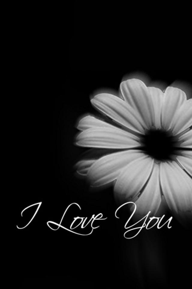 wallpapers 4 love love enough love love complicated love love love 640x960