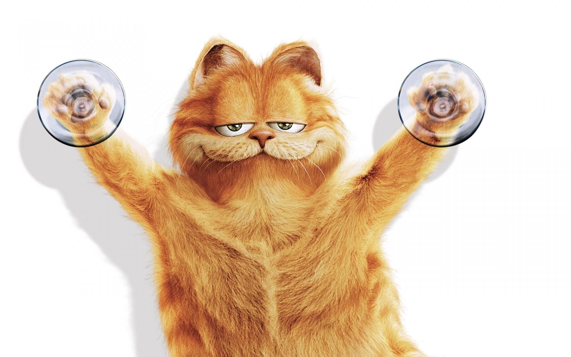 Кот с зеркалом  № 1689830 бесплатно