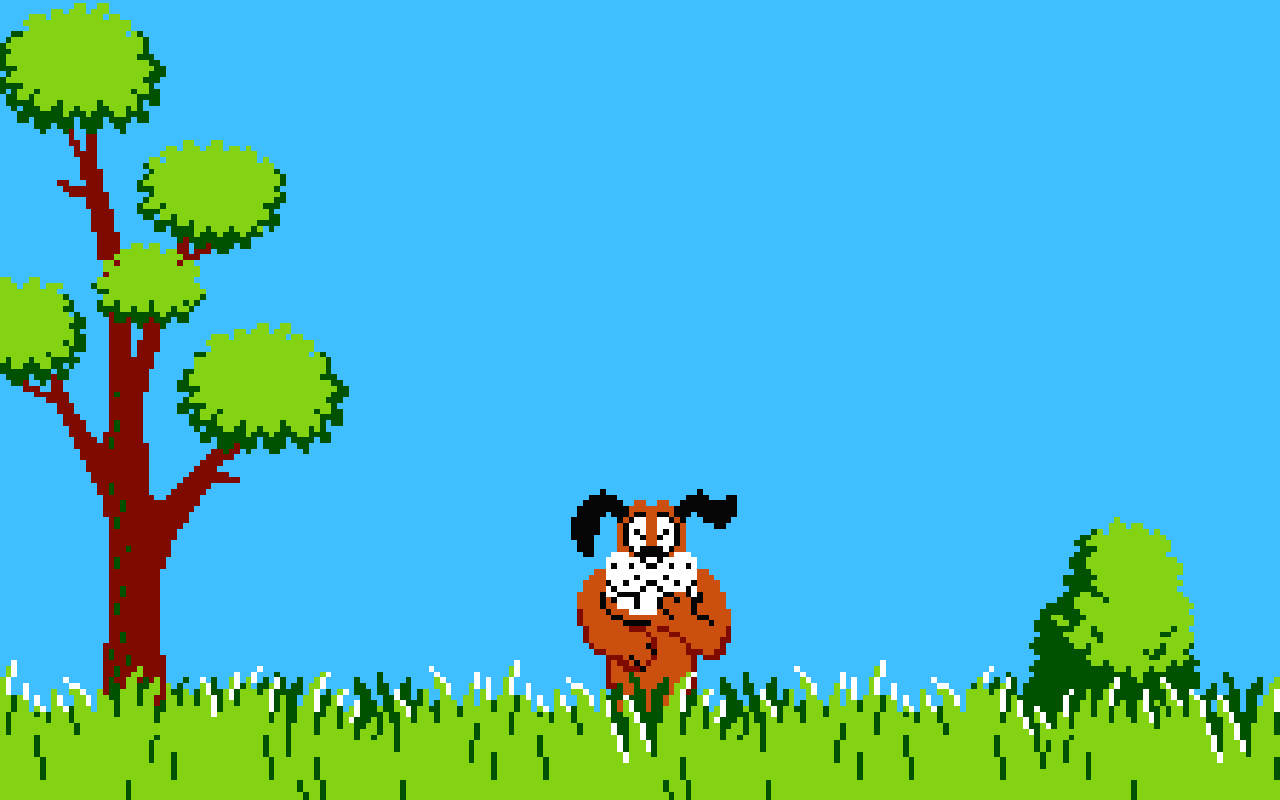 Donald Duck Hunting HD Wallpapers Backgrounds 1280x800