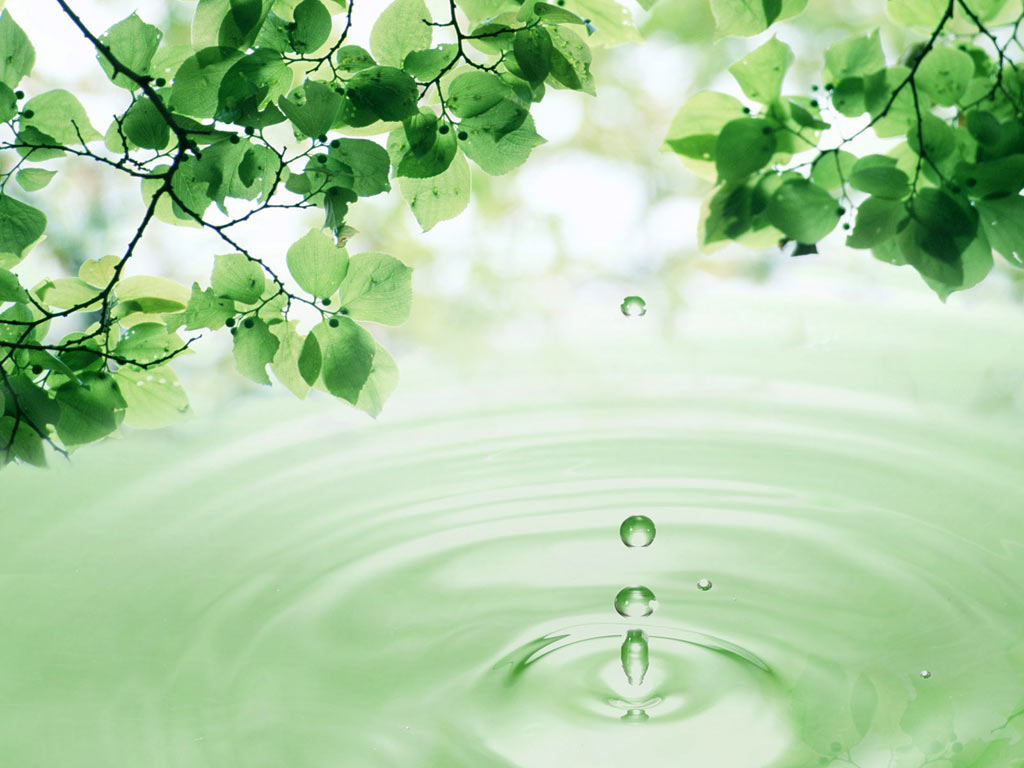 Free download 3D Leaves And Water Drop Apple Ipad Wallpaper