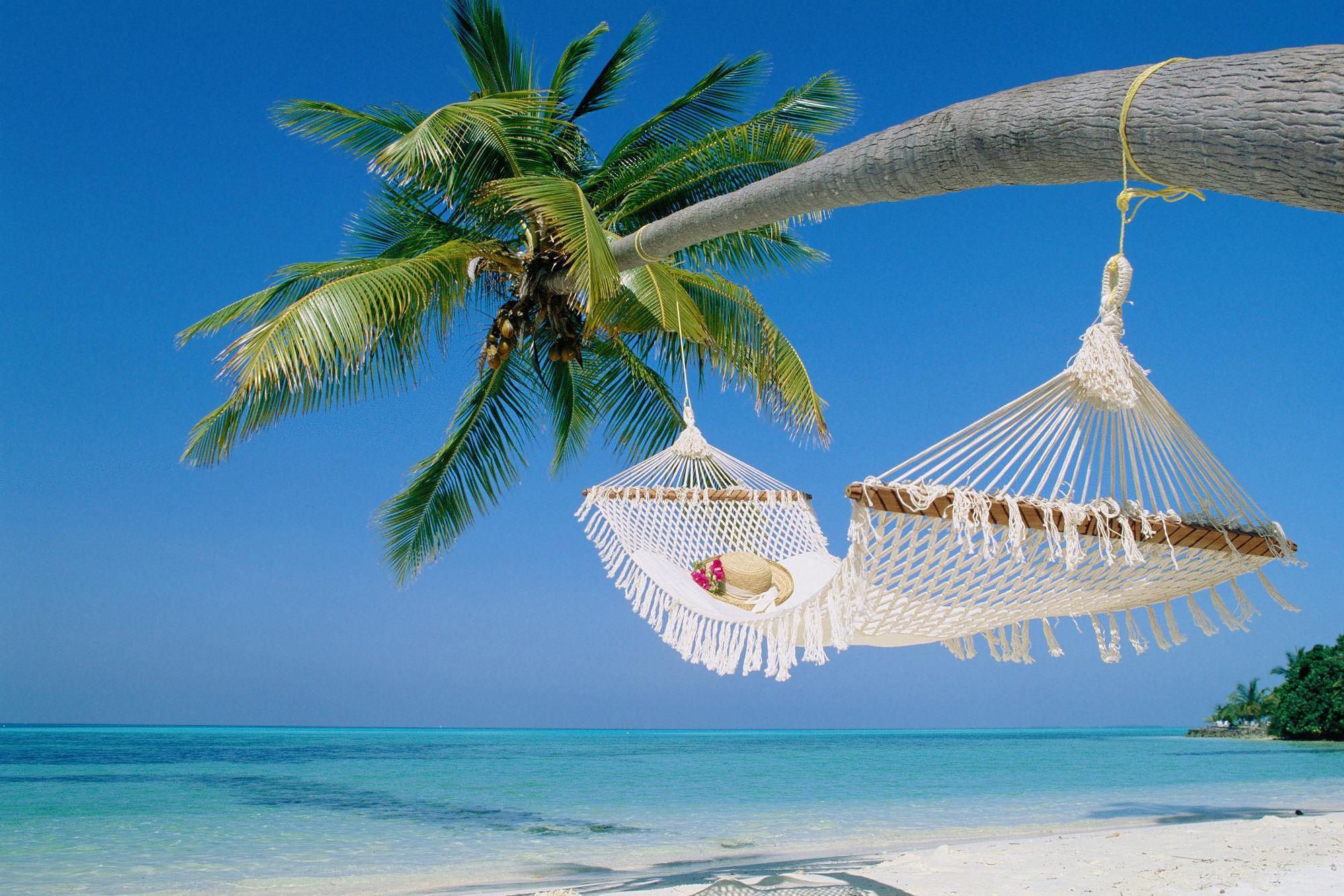 hammock on palmjpg JPEG pilt 1999 1333 pikslit   Skaleeritud 1999x1333