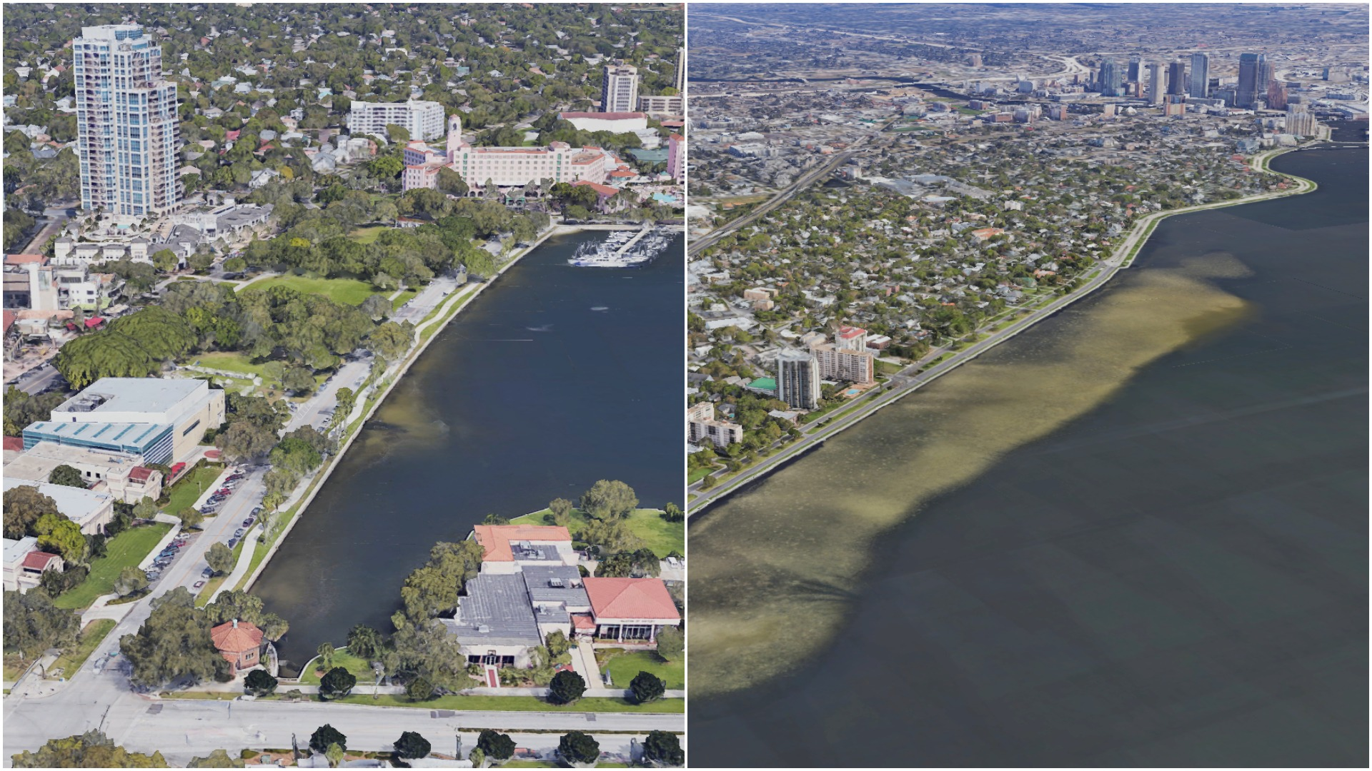 Two Bayshores two different takes on pandemic in St Pete and Tampa 1920x1080