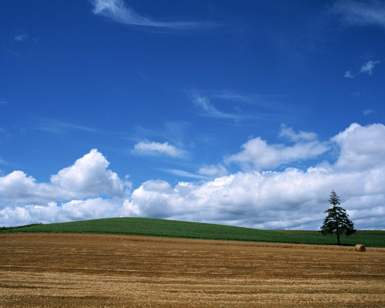 Blue sky clouds wallpaper blue sky wallpaper blue sky clouds 1280x1024