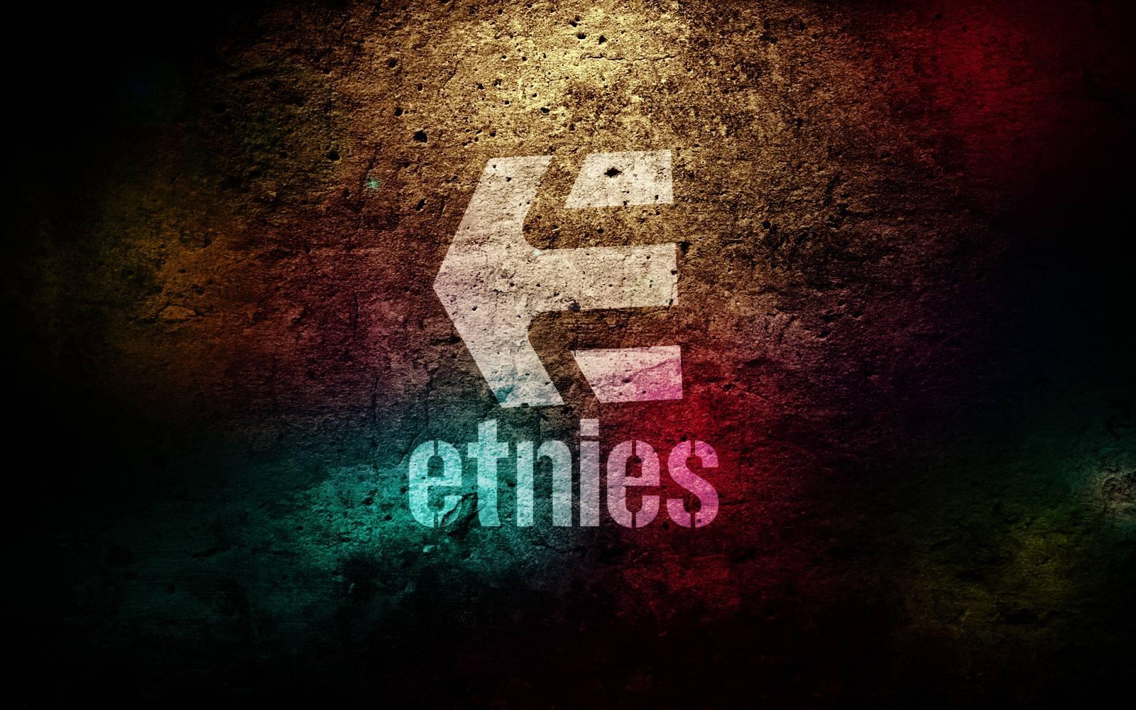 Etnies Skateboards Logo 1600x1000 for Desktop Wallpapers HD Background 1600x1000