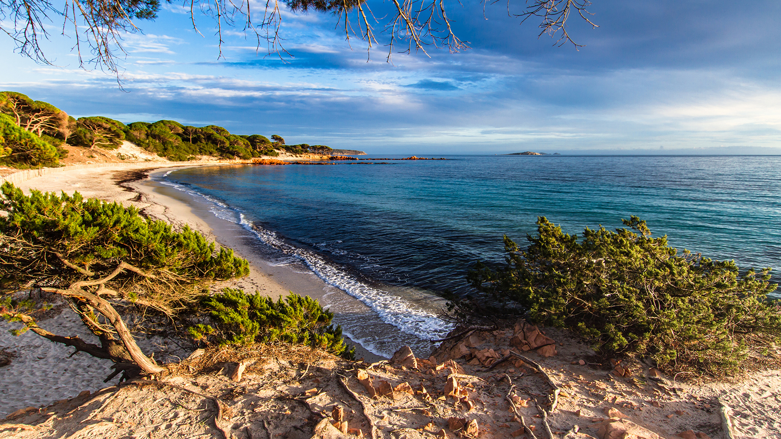 Desktop Wallpapers France Corsica Nature Waves Coast 2560x1440 2560x1440