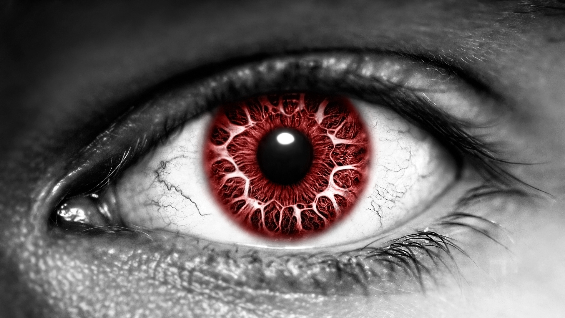 Free Download Blood Red Eye Wallpaper From Eyes Wallpapers