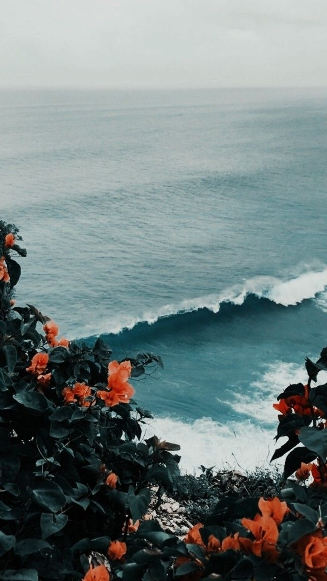 love this ocean view through the prettiest flowers Nature 640x1136