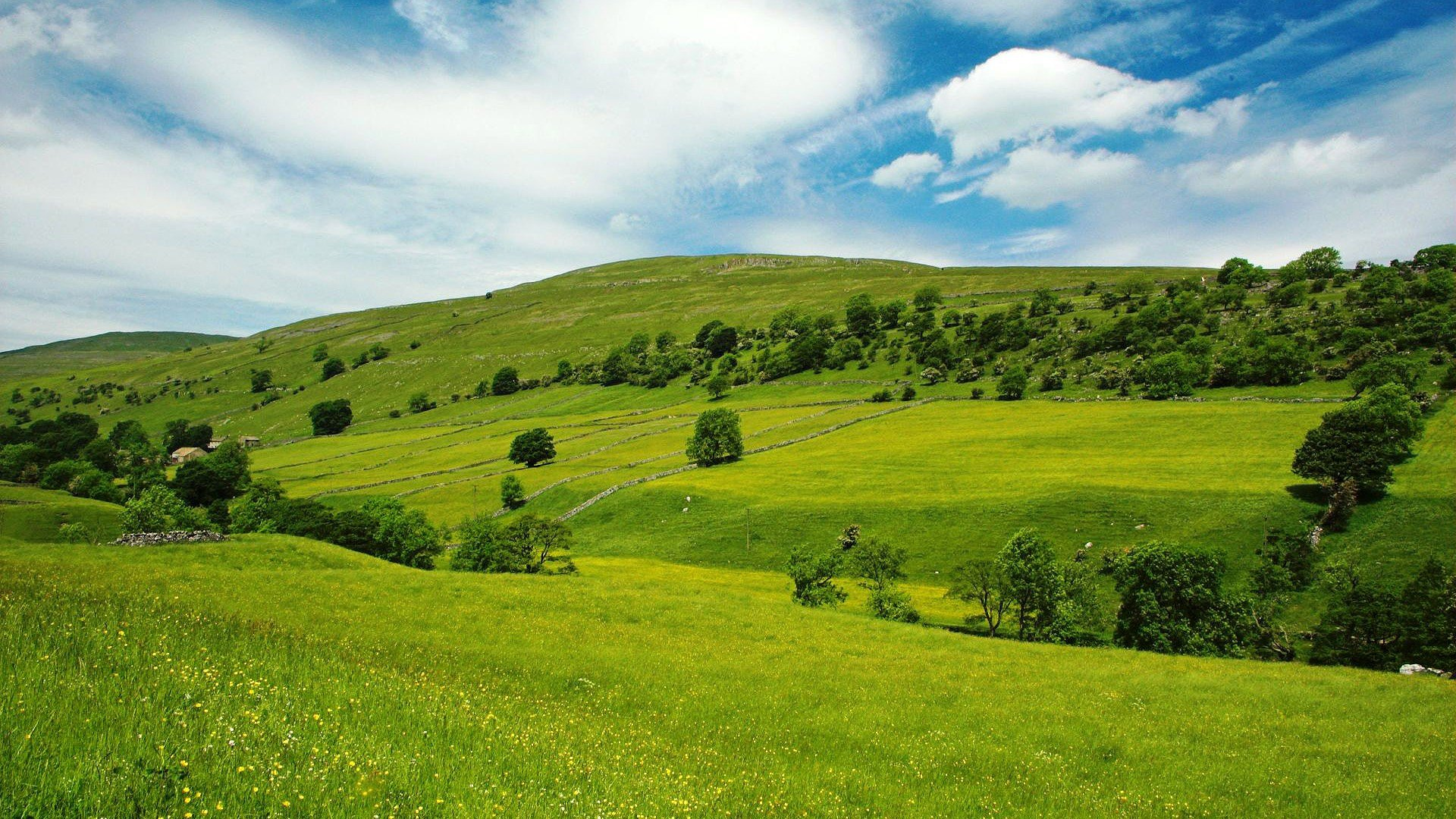 Green Plains Of Wales 1920x1080 HD Image Photography Landscapes 1920x1080