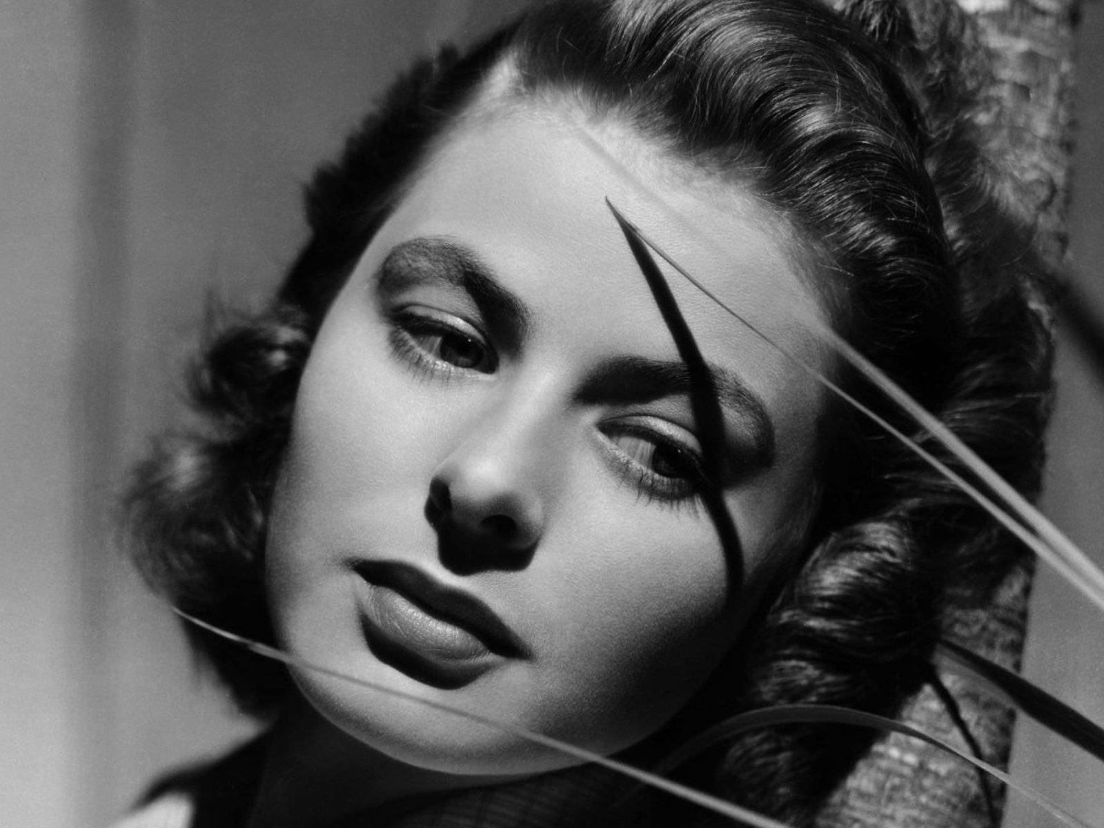 ingrid bergman wallpaper 1600x1200