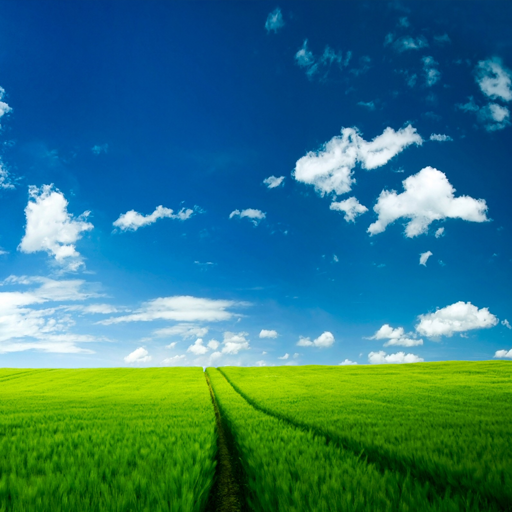 Green Field Ipad Wallpaper fit for your Apple Ipad Apple Ipad2 1024x1024