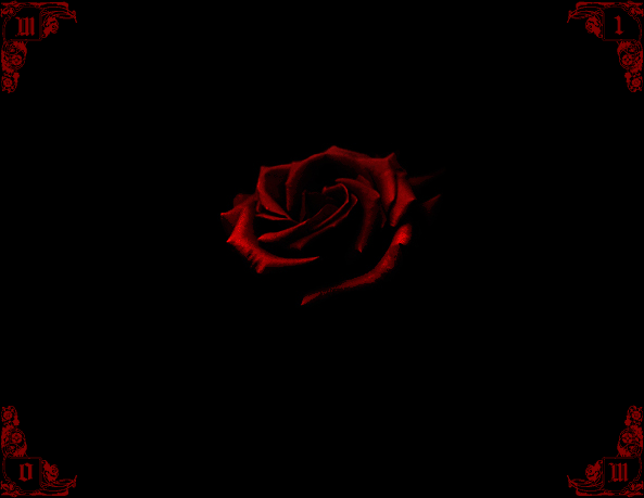 Red roses on black background wallpapersafari - Black and red rose wallpaper ...