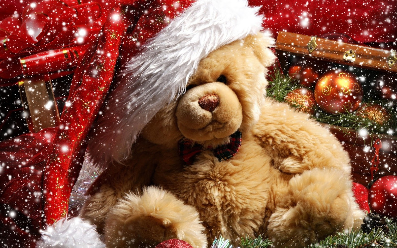 happy Teddy Day 2014  Teddy bear HD wallpapers and Quotes Valentine 1600x1000