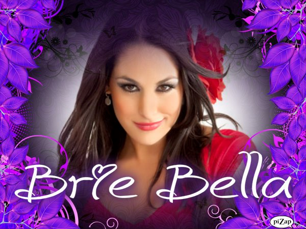 DeviantArt More Artists Like Brie Bella by barrymk100 600x450