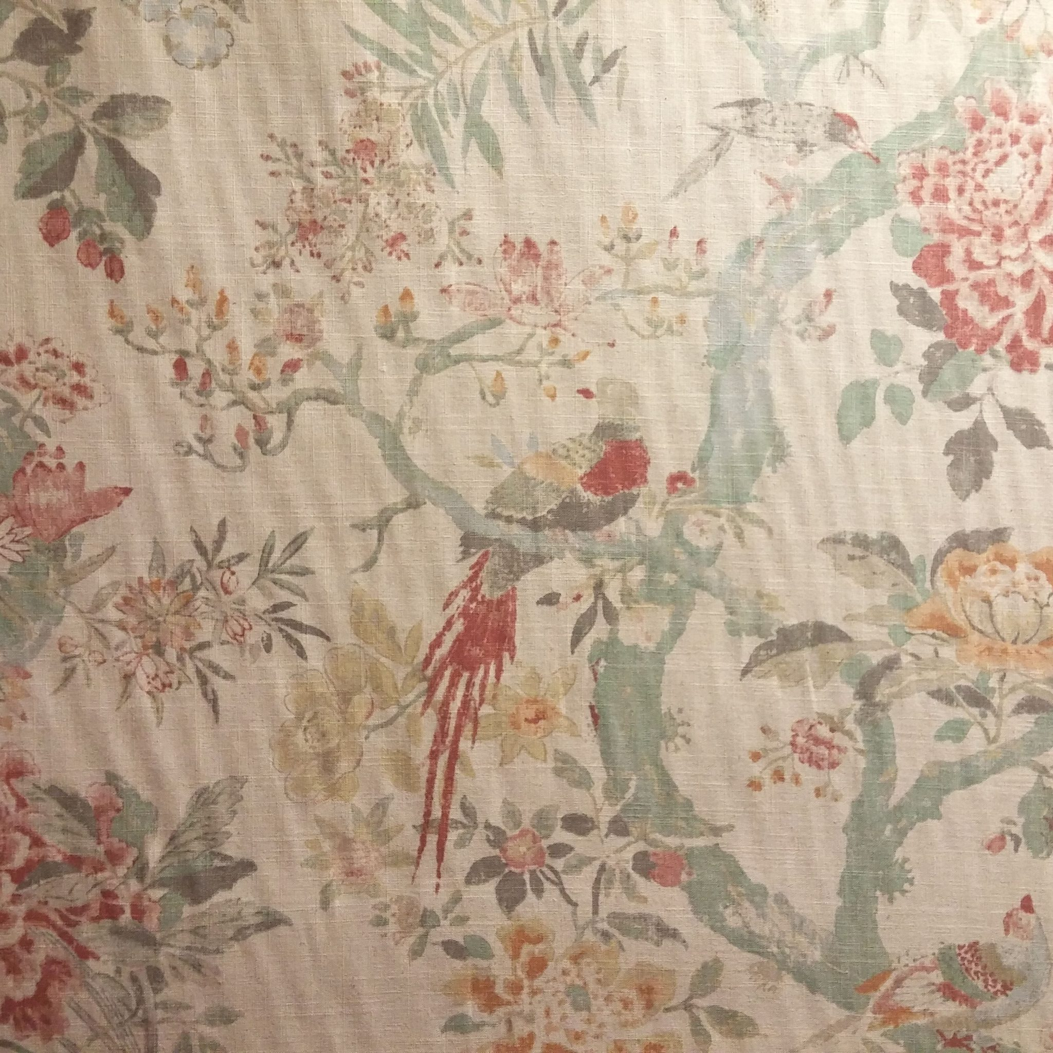 Arielle   Woodland Fabric store with designer and 2048x2048
