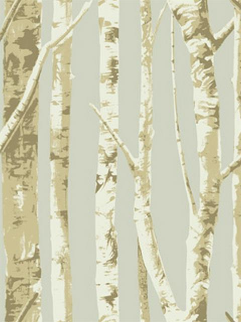 Eco chic wallpaper birch trees - woodloch edge pictures