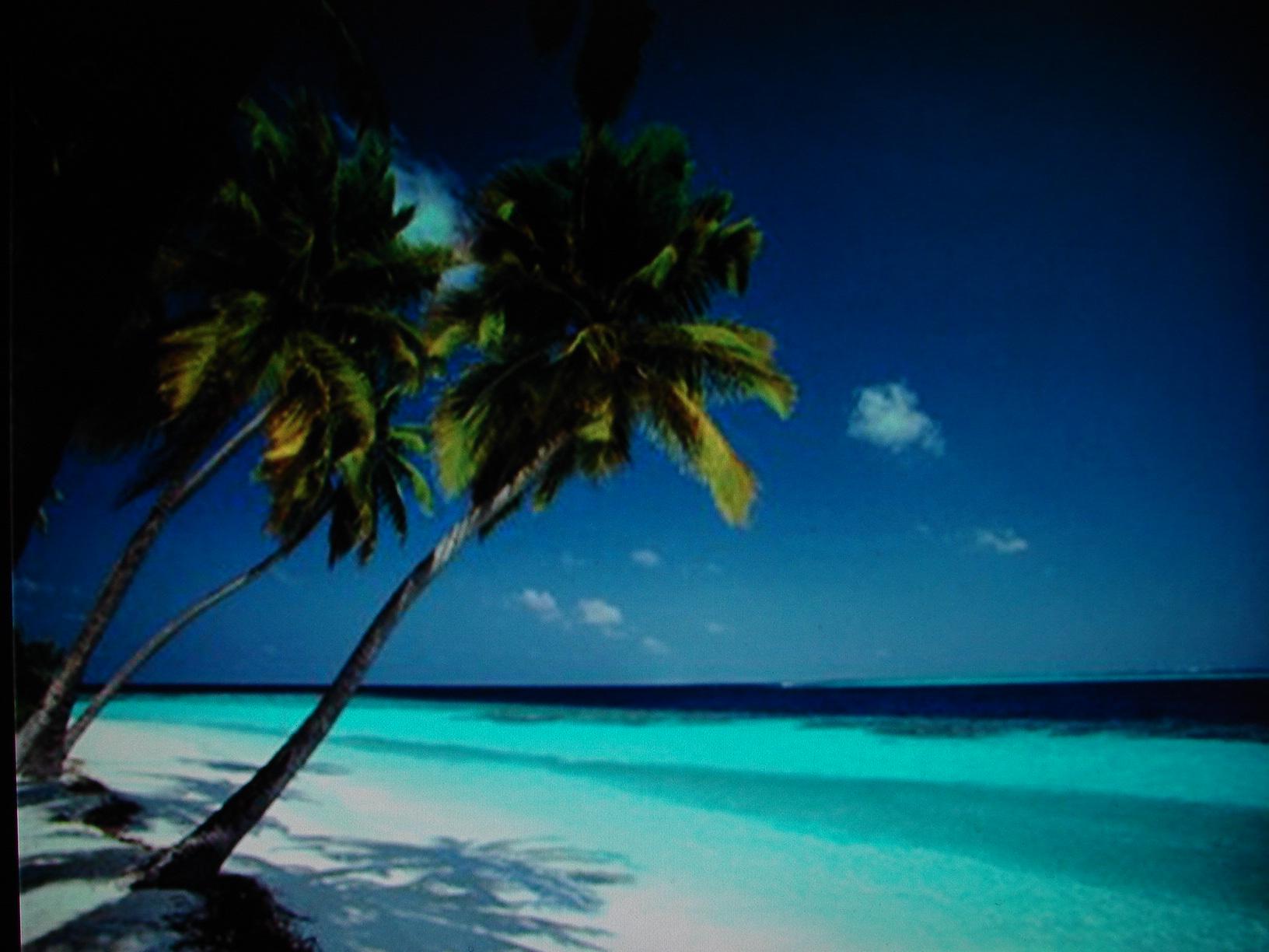 Caribbean Beach Wallpaper Desktop Backgrounds for HD Wallpaper 1632x1224
