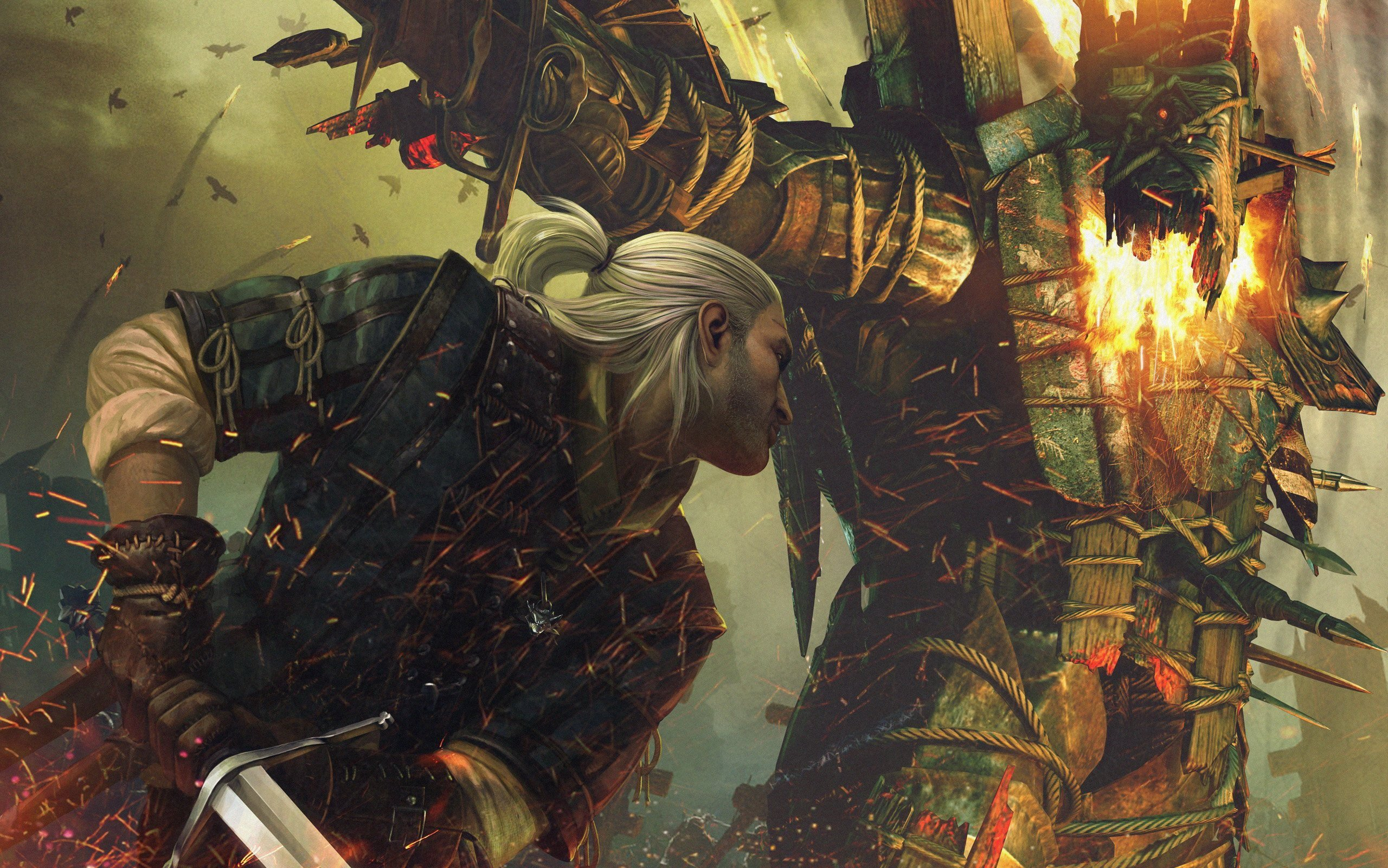 The Witcher 2 Assassins Of Kings HD Wallpaper Background Image 2560x1600