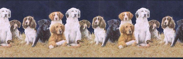 Sportsmans Gallery Labrador Dogs Wallpaper Border LG2164B eBay 770x251