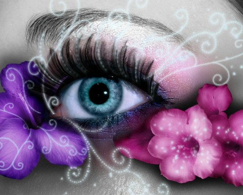 Lovely and Cute Eyes Wallpapers to Download CreativePlasma 500x400