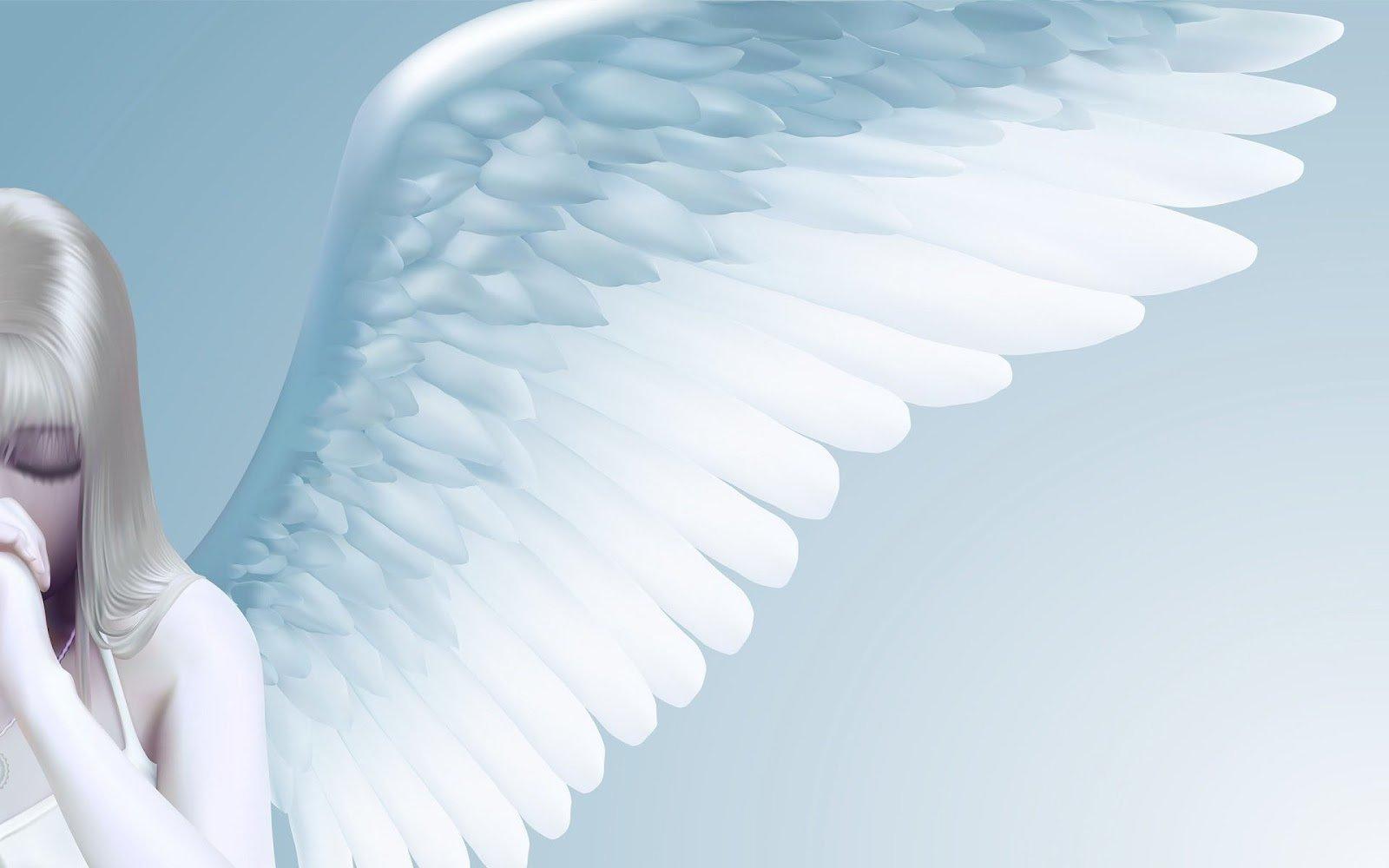 Fantasie wallpaper met een vrouwelijke engel met een grote witte 1600x1000