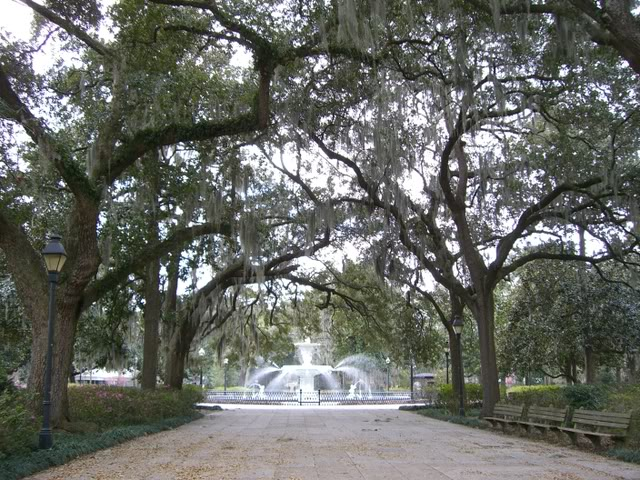 Search results for Savannah Ga Savannahcom A Complete Savannah Ga 640x480
