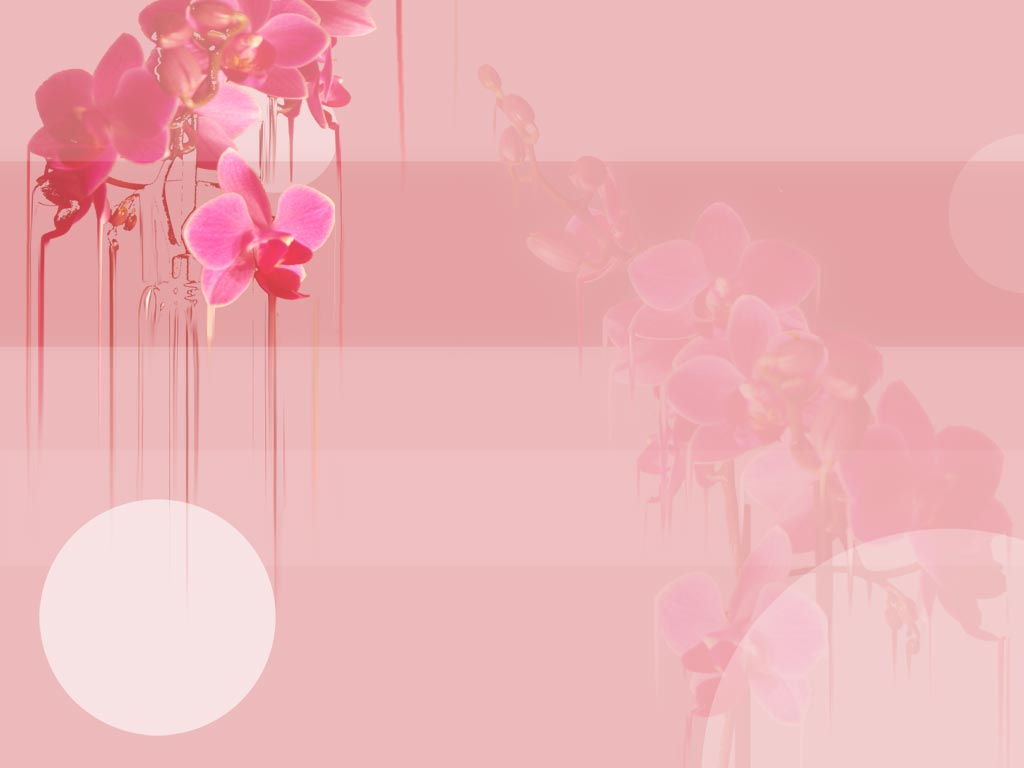 Embossed Moth Orchid Flower Jewelry Pearls Photo Wallpaper Mural For Living Room Sofa Tv Background